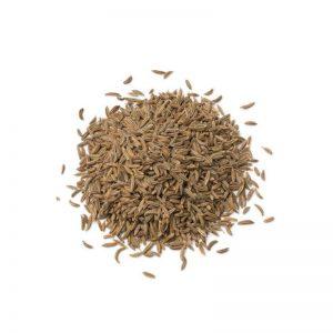 carvi en graines biologique